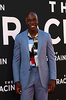 """LOS ANGELES - AUG 1:  McKinley Belcher III at the """"The Art of Racing in the Rain"""" World Premiere at the El Capitan Theater on August 1, 2019 in Los Angeles, CA"""