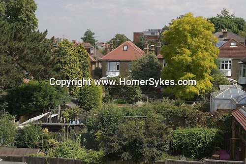 Looking down into traditional back gardens attached to middle class Edwardian houses. London 2007
