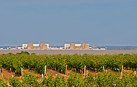 A view over the vineyards the river Gironde and on the other side of the water a nuclear power plant  Saint Estephe  Medoc  Bordeaux Gironde Aquitaine France