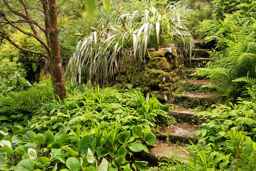 Stone stairs through landscaped gardens, Glenveagh Castle, Glenveagh National Park, County Donegal, Republic of Ireland