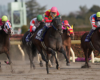 Testa Matta (USA) wins the February Stakes at Tokyo Racecourse on February 19th, 2012.