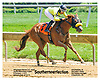 Southernperfection winning winning at Delaware Park on 6/15/17