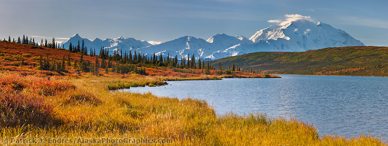 Autumn tundra along the shore of Wonder Lake, Mt Denali (Denali) of the Alaska range mountains, Denali National Park, interior, Alaska.