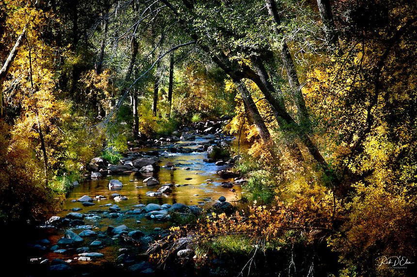 Oak Creek Canyon ©Rick D'Elia November 4, 2012