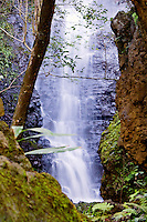 Hidden waterfall along the Wailua River in Lihue, Kaua'i.