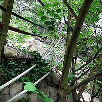 Detail of rope bridge linking Chimene's island to the other islands in the zoo, Parc Zoologique de Paris, or Zoo de Vincennes, (Zoological Gardens of Paris, also known as Vincennes Zoo), 1934, by Charles Letrosne, 12th arrondissement, Paris, France, pictured on June 8, 2011 in the afternoon. Chimene is a female Gibbon. In November 2008 the 15 hectare Zoo, part of the Museum National d'Histoire Naturelle (National Museum of Natural History) closed its doors to the public and renovation works will start in September 2011. The Zoo is scheduled to re-open in April 2014. Picture by Manuel Cohen.