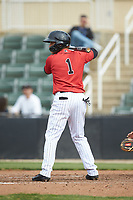 Ramon Beltre (1) of the Kannapolis Intimidators at bat against the Rome Braves at Kannapolis Intimidators Stadium on April 7, 2019 in Kannapolis, North Carolina. The Intimidators defeated the Braves 2-1. (Brian Westerholt/Four Seam Images)