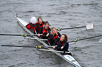 Crew: 341  Cheltenham Coll  Event: Girls Fours<br /> <br /> Schools' Head of the River 2017<br /> <br /> To purchase this photo, or to see pricing information for Prints and Downloads, click the blue 'Add to Cart' button at the top-right of the page.