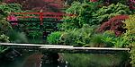 Kubota Garden, Seattle, WA<br /> Two bridges over a reflecting pond in early spring.  Kubota Japanese Garden