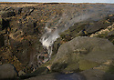 29/01/16<br />