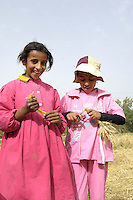 Egypte, Belbeis, 03 mei 2007.Sekem.Sekem schoolklas 3 doet een project over landbouw: tarwe-oogst, opbinden.Sekem school. Agricultural project.   .Foto (c) Michiel Wijnbergh.