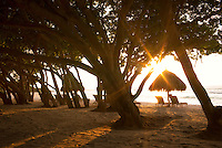 Sunburst through trees with beach chairs and umbrellas on beach. Punta Mita, Mexico