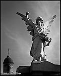 Recoleta Angel<br /> Buenos Aires, Argentina
