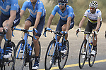 The peloton including Movistar Team with World Champion Alejandro Valverde (ESP) during Stage 4 of the 2019 UAE Tour, running 197km form The Pointe Palm Jumeirah to Hatta Dam, Dubai, United Arab Emirates. 26th February 2019.<br /> Picture: LaPresse/Fabio Ferrari | Cyclefile<br /> <br /> <br /> All photos usage must carry mandatory copyright credit (© Cyclefile | LaPresse/Fabio Ferrari)