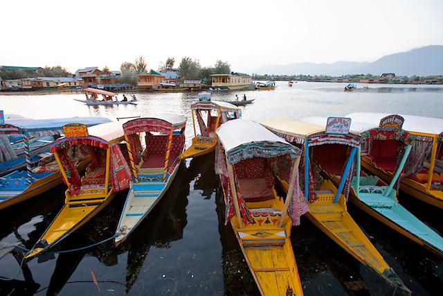 The Shikaras on Dal Lake, Srinigar, Kashmir