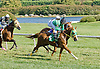 Midnight Exchange winning at Delaware Park on 9/24/12