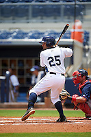 GCL Rays catcher Jovany Felipe (25) at bat during the second game of a doubleheader against the GCL Red Sox on August 4, 2015 at Charlotte Sports Park in Port Charlotte, Florida.  GCL Red Sox defeated the GCL Rays 2-1.  (Mike Janes/Four Seam Images)