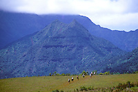 Horsebackriding with Princeville ranch stables, Kauai