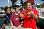 Tia, Georgie & Carly Looking at Lobsters