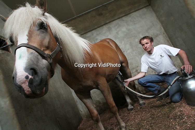 Foto: VidiPhoto..HARBRINKHOEK - Heel Nederland moet aan de paardenmelk, de meest gezonde drank die er bestaat. Dat vindt Arjan Sand van Paardenmelkerij Sand in het Twentse Harbrinkhoek. De 70 halflinger paarden van Sand worden driemaal per dag gemolken en produceren per paard zo'n 20 liter melk. De beste koe is gewoon een paard, omdat ze zeker 20 jaar in productie blijven en een koe hooguit vijf jaar. Het edele dier levert de meest gezonde melk die er bestaat. Het lijkt het meest op moedermelk. Wat weinig mensen weten is dat paardenmelk eczeem en kinkhoest geneest, opvliegers en jeugdpuistjes voorkomt, de weerstand verhoogt, bloeddruk verlaagt en ook helpt tegen astma en suikerziekte. Daarom worden er van paardenmelk ook natuurgeneesmiddelen gemaakt. In Duitse ziekenhuizen worden die inmiddels aanbevolen. Sand is nu een campagne begonnen om dit wondermiddel ook in Nederland onder de aandacht te brengen..