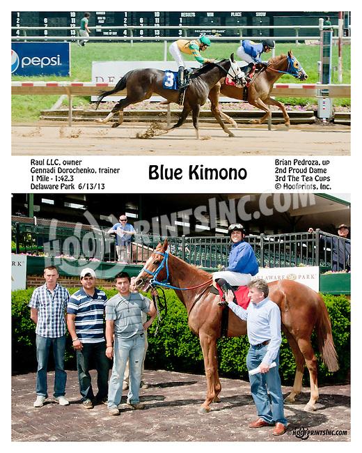 Blue Kimono winning at Delaware Park on 6/13/13