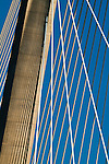 Cable stays of the Arthur Ravenel Jr bridge in Charleston SC