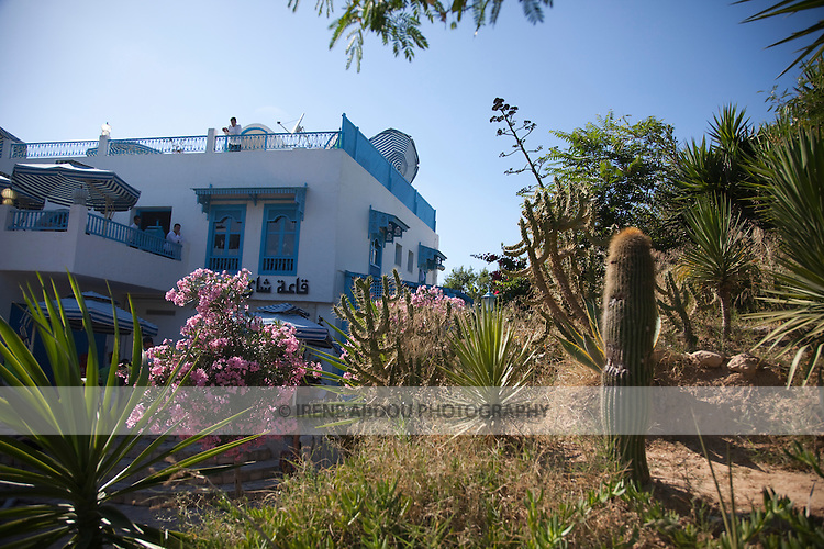 Cactus and other plants decorate Sidi Bou Said, near the Tunisian capital, cafe in the background.