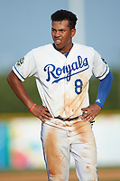 Rafael Romero (8) of the Burlington Royals during the game against the Johnson City Cardinals at Burlington Athletic Stadium on July 15, 2018 in Burlington, North Carolina. The Cardinals defeated the Royals 7-6.  (Brian Westerholt/Four Seam Images)