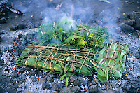 A laplap dish wrapped with bananas leaves being cooked on coals, Sulphur Bay, Tanna Island, Vanuatu