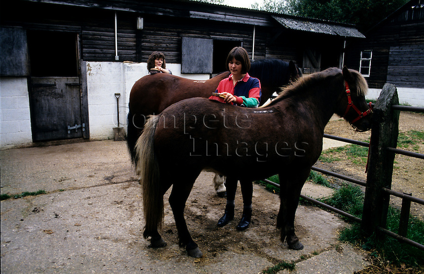 Women grooming their horses at a stable