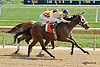 Don'tstop Theparty winning at Delaware Park on 9/20/14