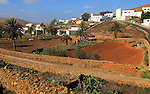 Farmland and houses in the village of Toto, Pajara, Fuerteventura, Canary Islands, Spain