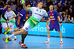 League ASOBAL 2017-2018 - Game: 14.<br /> FC Barcelona Lassa vs Helvetia Anaitasuna: 38-26.<br /> Antonio Bazan.