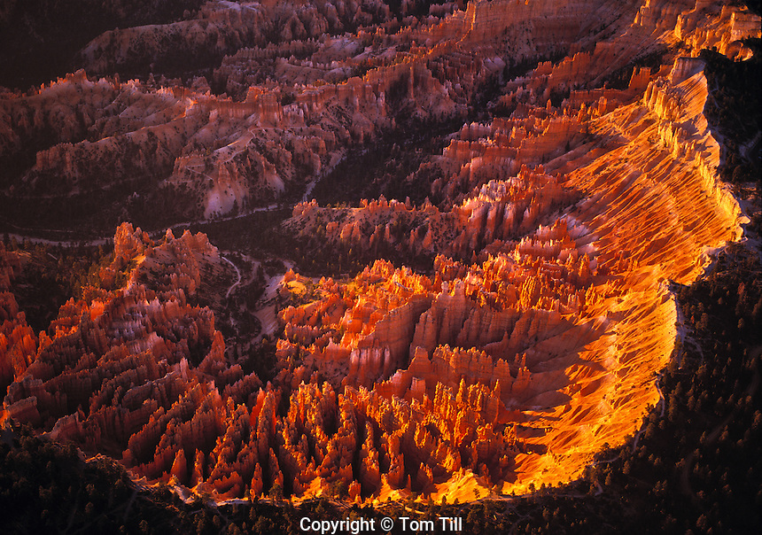 Aerial View of Bryce Amphitheater at Sunrise, Bryce Canyon National Park, Utah