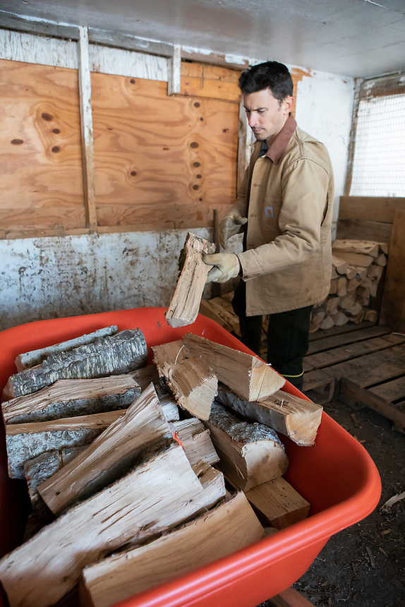 NORTHFIELD, VERMONT - Nathaniel Miller on his farm, Falling Damps Farm. Winter has arrived early in Vermont. Time to gather the wood.