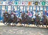 Belmont Stakes - Summer Bird