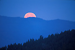 The full moon sets behind the forested ridges of the Bitterroot Mountains outside of Missoula, Montana