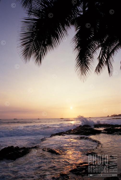 Sunset with palms, Kona, Big Island