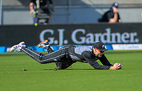 New Zealand's Martin Guptill catches England's Dawid Malan. Twenty20 International cricket match between NZ Black Caps and England at Westpac Stadium in Wellington, New Zealand on Sunday, 3 November 2019. Photo: Dave Lintott / lintottphoto.co.nz