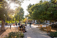 General campus photo of Occidental College, including the quad, Nov. 17, 2017.<br /> (Photo by Marc Campos, Occidental College Photographer)