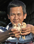 Teng Sreng, 47, displays some baby chickens he is raising in Sretreng, a village in the Kampot region of Cambodia.