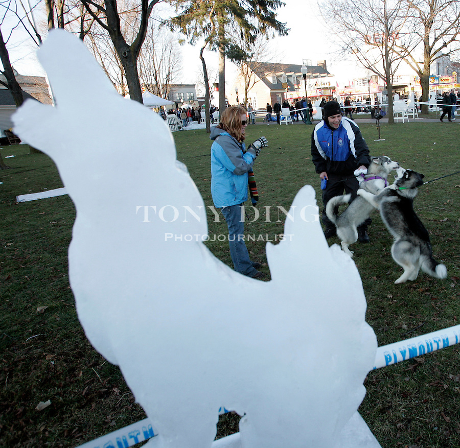 """Shelby Township resident Christine Roosa, left, watches her one year old Husky """"Sadie"""" play with another 5 month old Husky """"Animosh"""", beside a howling wolf sculpture on display on Saturday, January 21, 2006 at the Plymouth Ice Spectacular, an ice carving competition that draws competitors from all over Michigan as well as Japan and Scandinavia. TONY DING/Special to the Free Press"""