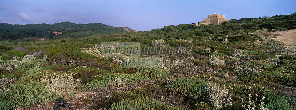 Europe/Provence-Alpes-Côte d'Azur/83/Var/Iles d'Hyères/Ile de Porquerolles: Le Fort du Grand Langoustier