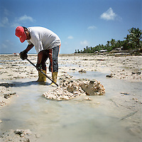 A man digs up coral rocks to build a sea wall on the shore to protect his home from flooding due to rising sea level and storm surges.