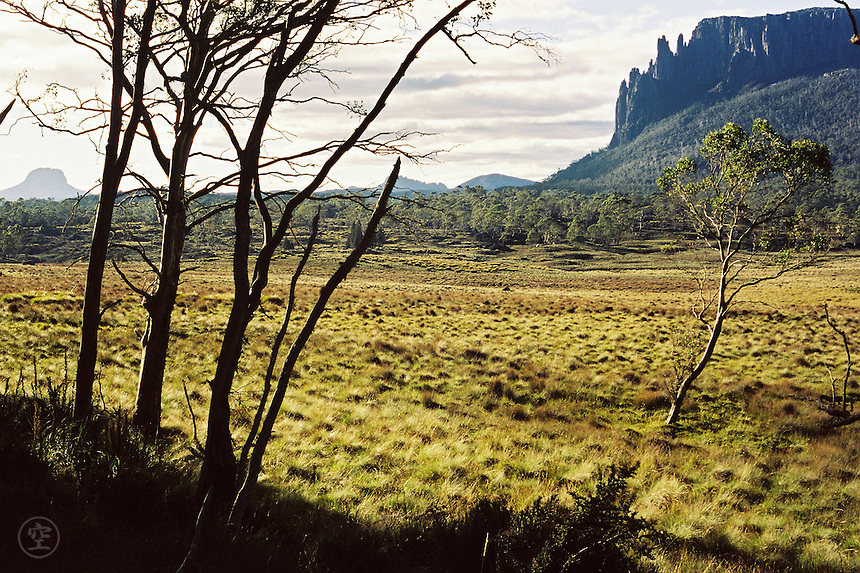 Early morning in Tasmania's Cradle Mountain-Lake Saint Clair National Park, with Mount Oakleigh and Barn Bluff.