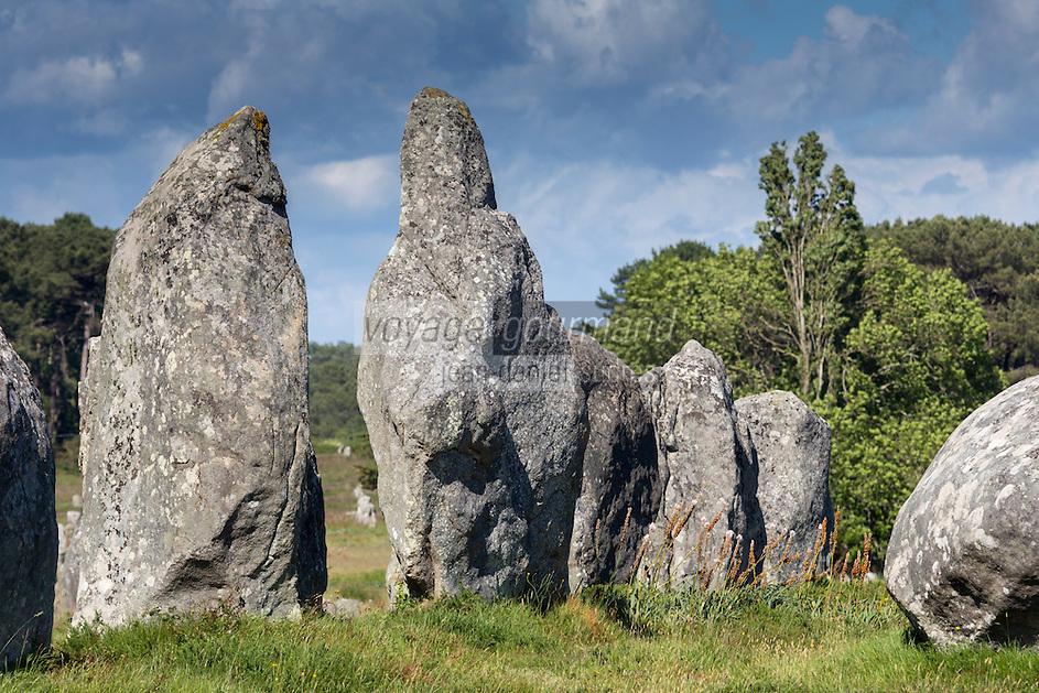 France, Morbihan (56), Golfe du Morbihan, Carnac: Carnac: Alignements de Carnac, Alignements de Kermario  // France, Morbihan, Gulf of Morbihan, Carnac: Carnac stones,Kermario alignment