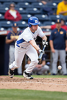 Jimmy Herron (30) of the Duke Blue Devils lays down a bunt against the California Golden Bears at Durham Bulls Athletic Park on February 20, 2016 in Durham, North Carolina.  The Blue Devils defeated the Golden Bears 6-5 in 10 innings.  (Brian Westerholt/Four Seam Images)