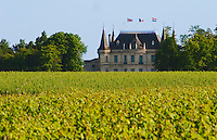 A view over the vineyard to Chateau Palmer with British French and Dutch flags Margaux Medoc Bordeaux Gironde Aquitaine France
