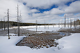 USA, Wyoming, Yellowstone National Park, open landscape at Foutain Paint Pot, Lower Geyser Basin