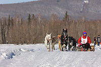 Alison Cousins races in the 2008 Open North American Championship sled dog race, third heat, March 16, 2008.